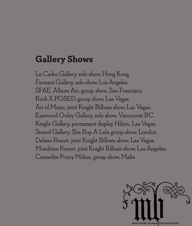 Gallery Shows